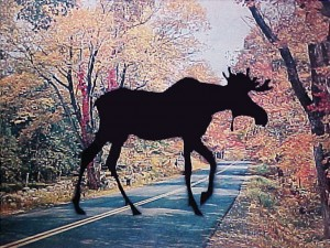 Moose Crossing serigraph